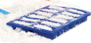 Snow grow in an ice cube tray