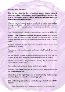 Red Cabbage Information